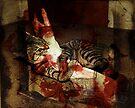 Killer Kitten by jodi payne