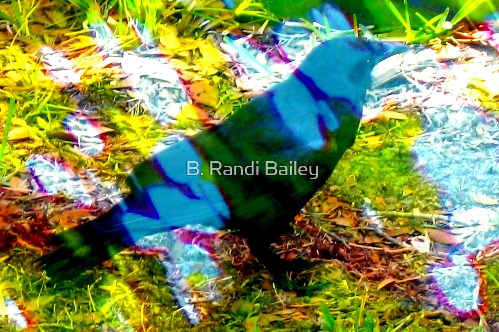 Blackbird in dappled light by ♥⊱ B. Randi Bailey