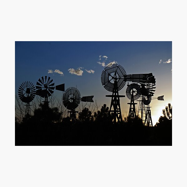 Windmill Farm at Sunset Photographic Print
