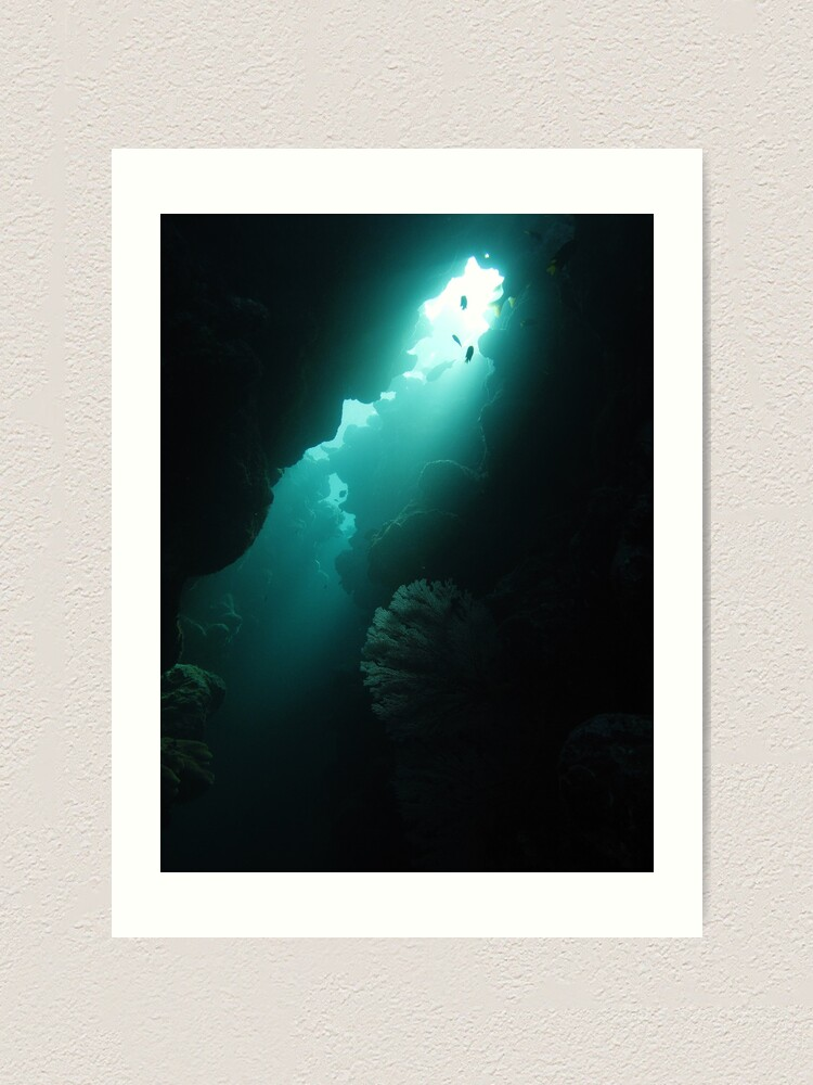 Alternate view of Crevice with Gorgonian Art Print