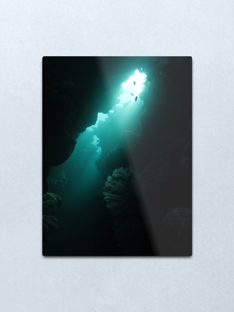 Alternate view of Crevice with Gorgonian Metal Print