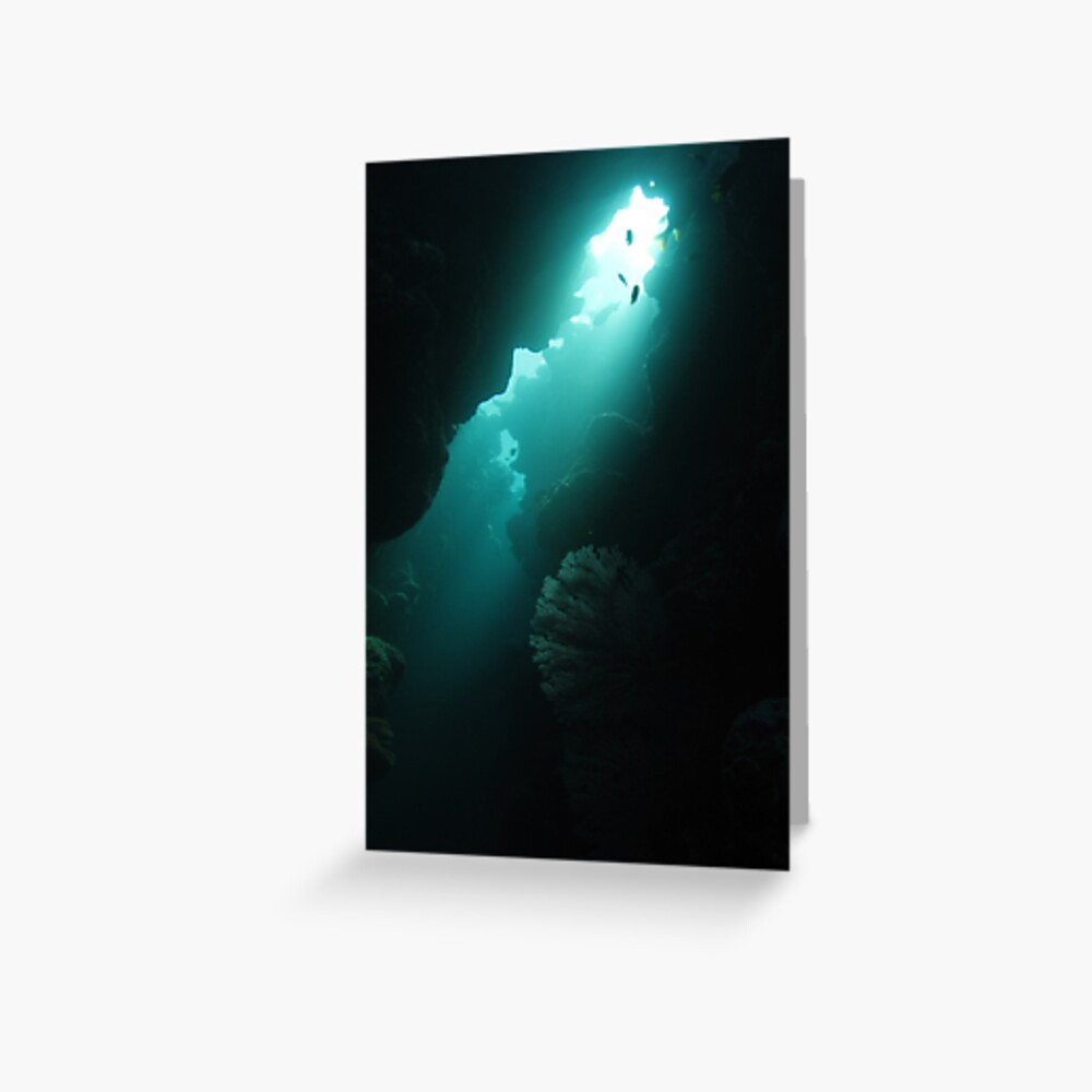 Crevice with Gorgonian Greeting Card