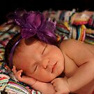 Newborn September by Sharon Robertson