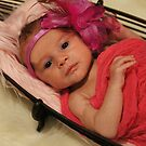 Newborn November by Sharon Robertson