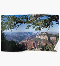 Grand Canyon from Bright Angel trail Poster