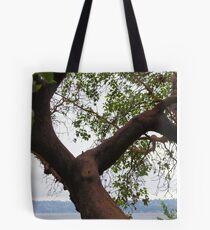 Trees Along Lake Washington Tote Bag