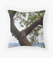 Trees Along Lake Washington Throw Pillow