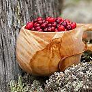 Lingonberry by ilpo laurila