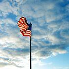 Blowing in the patriotic breeze by tamdevo1