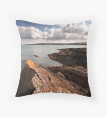 Bull Bay Throw Pillow