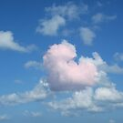Heart in the Sky by Christine  Wilson