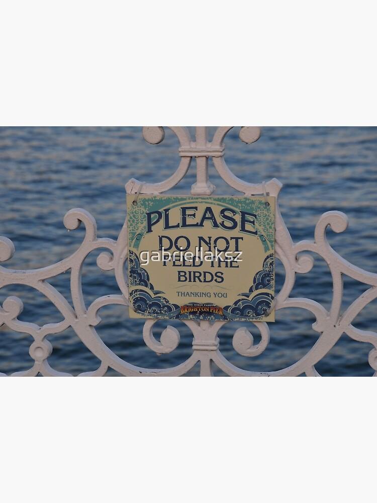 Please don't feed the birds by gabriellaksz