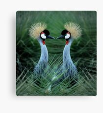 Just one Kiss & we could become One! Canvas Print
