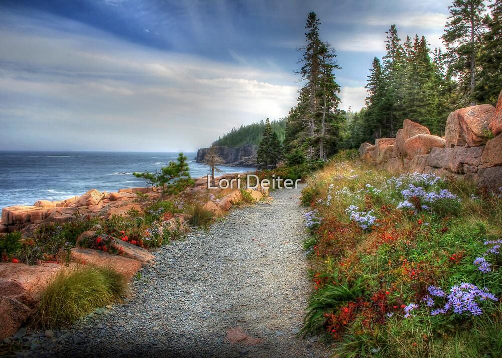 Coastal Meandering by Lori Deiter