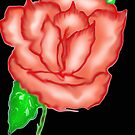 Rose, digital art by MaeBelle