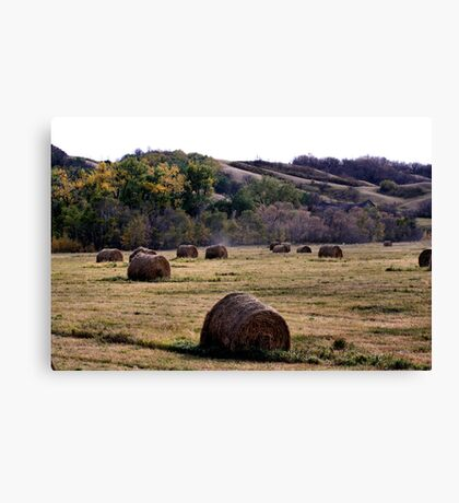 Fall In the Qu' Appelle Valley Canvas Print