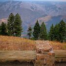 hells canyon overlook by Bruce  Dickson