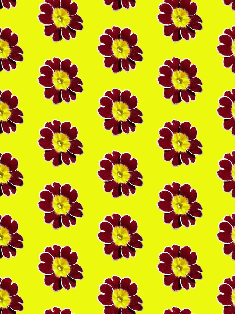 Gold Lace Primula - Flower Power Collection by Folklore1685