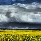 Bluff Knoll Covered In Cloud by Eve Parry