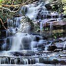 Top Falls - Somersby, Brisbane Waters National Park NSW Australia by Bev Woodman