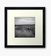 Engure, Latvija Framed Print