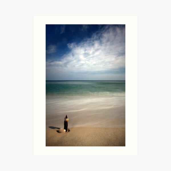 Longnook Beach Shell Art Print