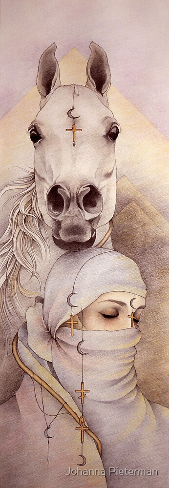 Desert Angels by Johanna Pieterman