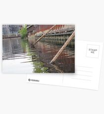 Rusted Industry and Nature Postcards