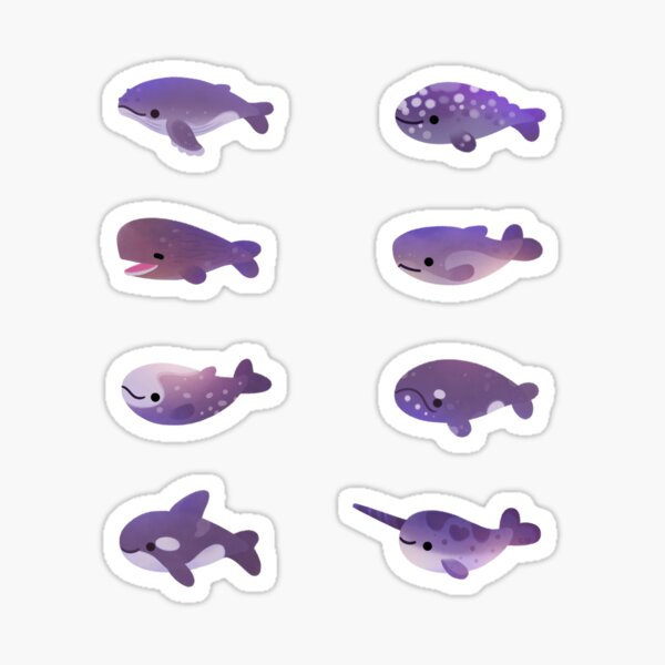 Whale Day Sticker