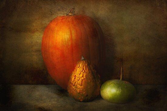 Autumn - Gourd - Melon family  by Michael Savad