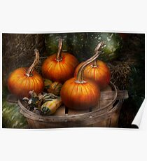 Autumn - Gourd - Pumpkins and some other things  Poster