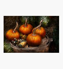 Autumn - Gourd - Pumpkins and some other things  Photographic Print