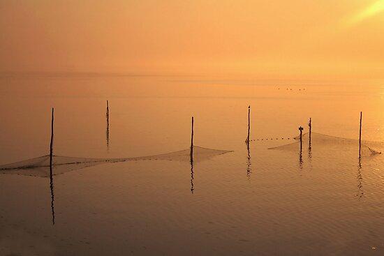 Fishing Nets IJsselmeer by Jo Nijenhuis