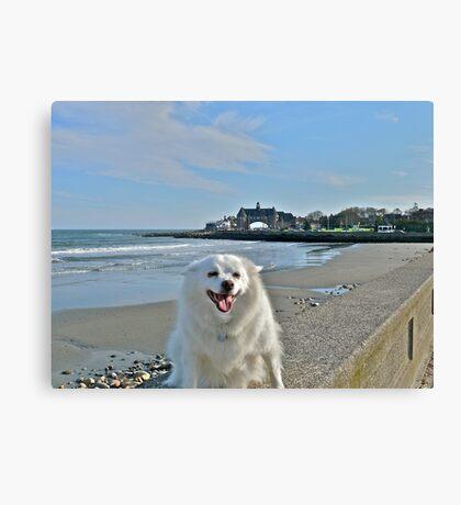 Last Great Beach Day - Sylvie At Narragansett Beach Canvas Print