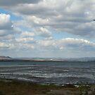 Pomorie Lake by Maria1606