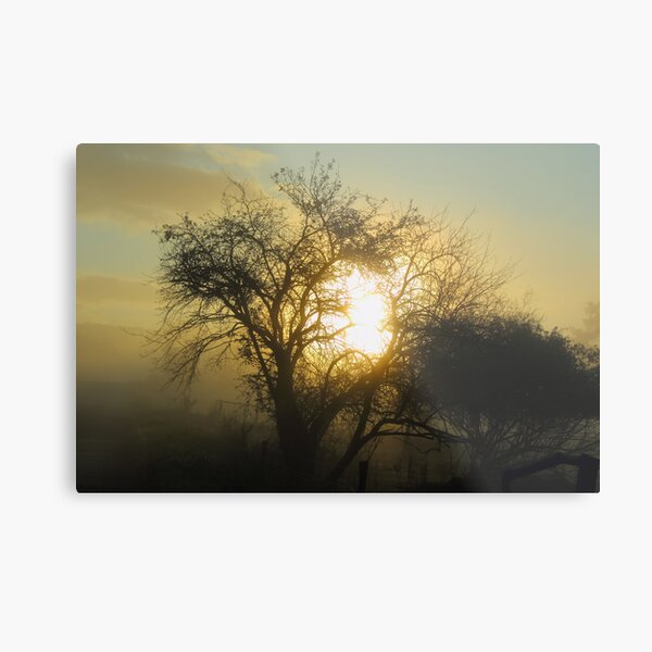 Redreaming Emerging from the Mist Metal Print