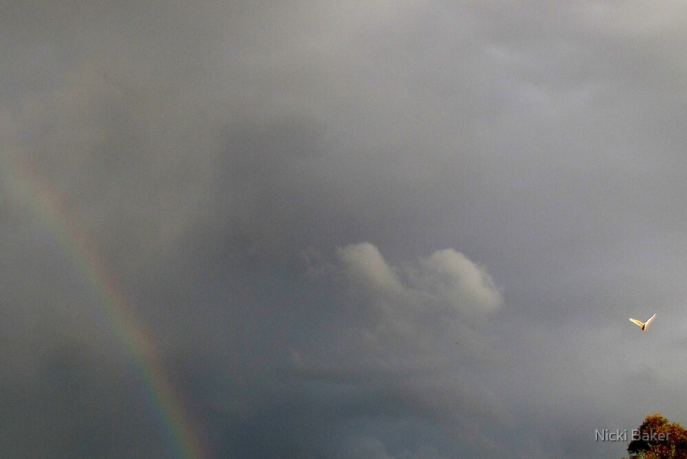 Hope follows the Storm by Nicki Baker