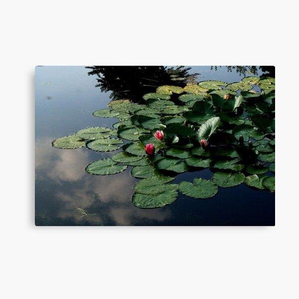 Waterscape 9 Canvas Print