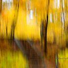 Stairs - Impressions by Yannik Hay