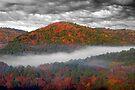 Misty Hills At Beavers Bend by Carolyn  Fletcher