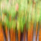 Trees - 22 - Impressions by Yannik Hay