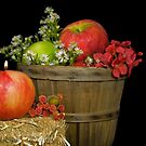 Autumn Apples by Maria Dryfhout