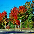 Small Town Fall by Robert Goulet