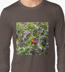 Colorful Rainbow Lorikeet on branch T-Shirt