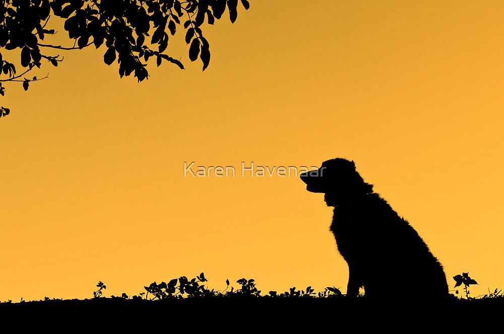 Silhouette by Karen Havenaar