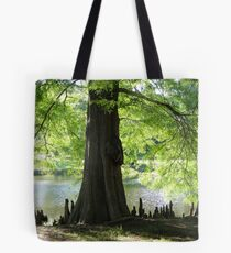 Trees Knees Tote Bag