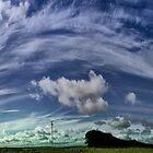 Bluff Point Wind Farm Gates, Woolnorth...NW Tassie by kabee6