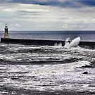 Harbour Light at Tynemouth,Northumberland by Trevor Kersley