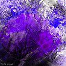 Ice beauty by © Pauline Wherrell
