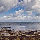 Isle of Wight shore by MarceloPaz